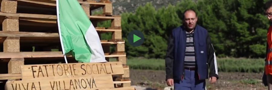 """""""Gli Essenziali"""" – Progetto sociale di agricoltura sociale"""